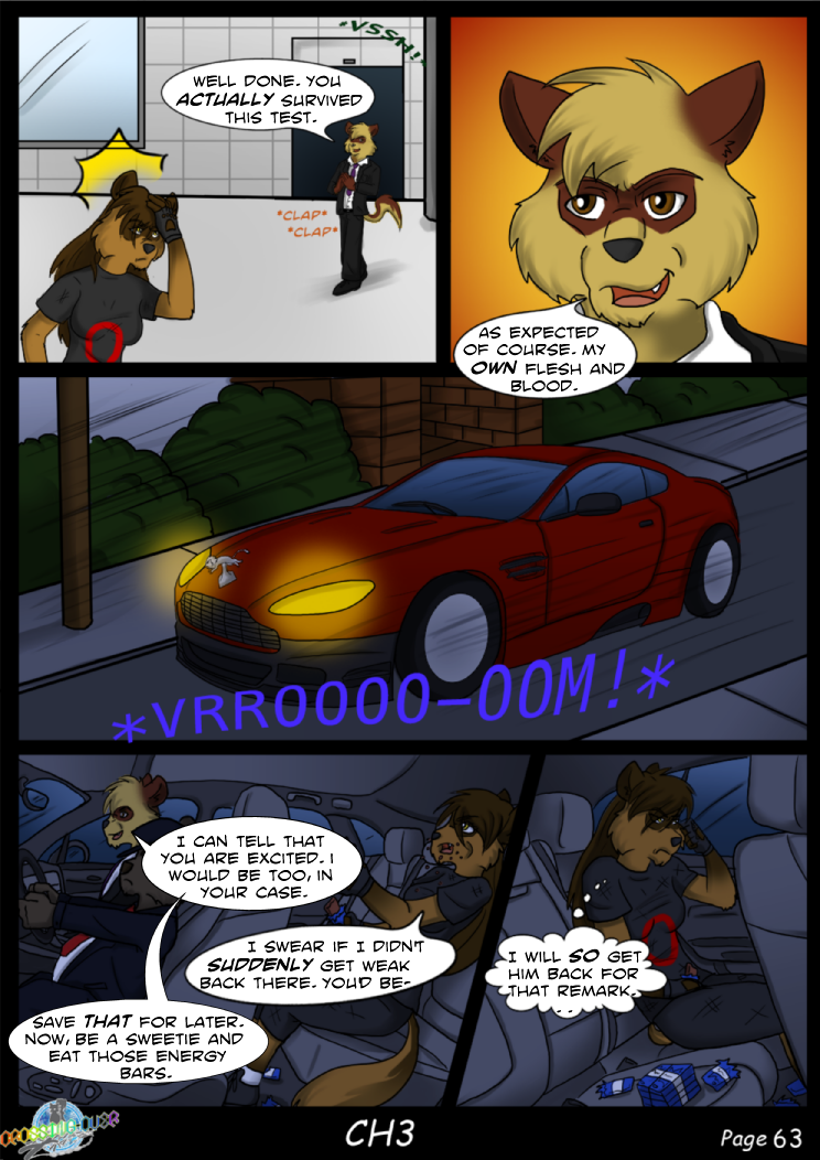 Page 63 (Ch 3)